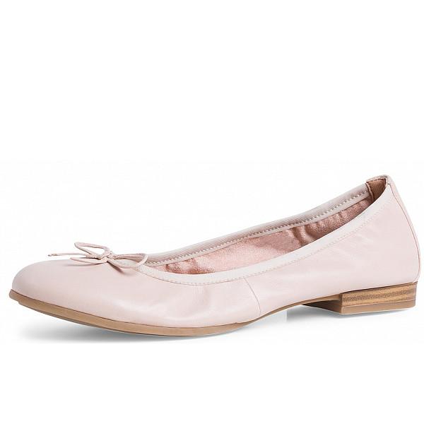 Tamaris Ballerina rose